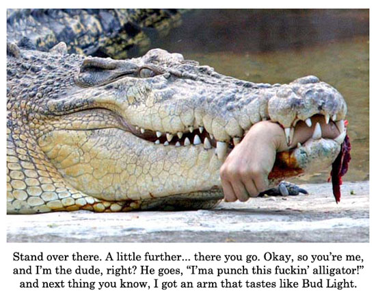crocodile punching