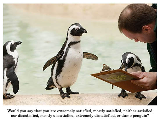 penguin opinion